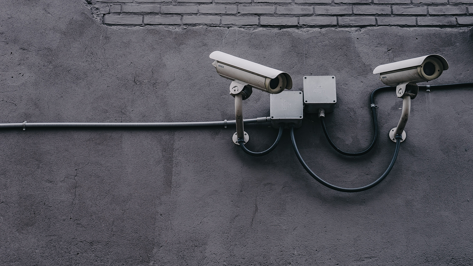 What an organisation's cyber security policy should look like